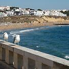 Portugal, Algarve, Albufeira beach by Janone