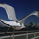 Flight to Manhattan by supermimai