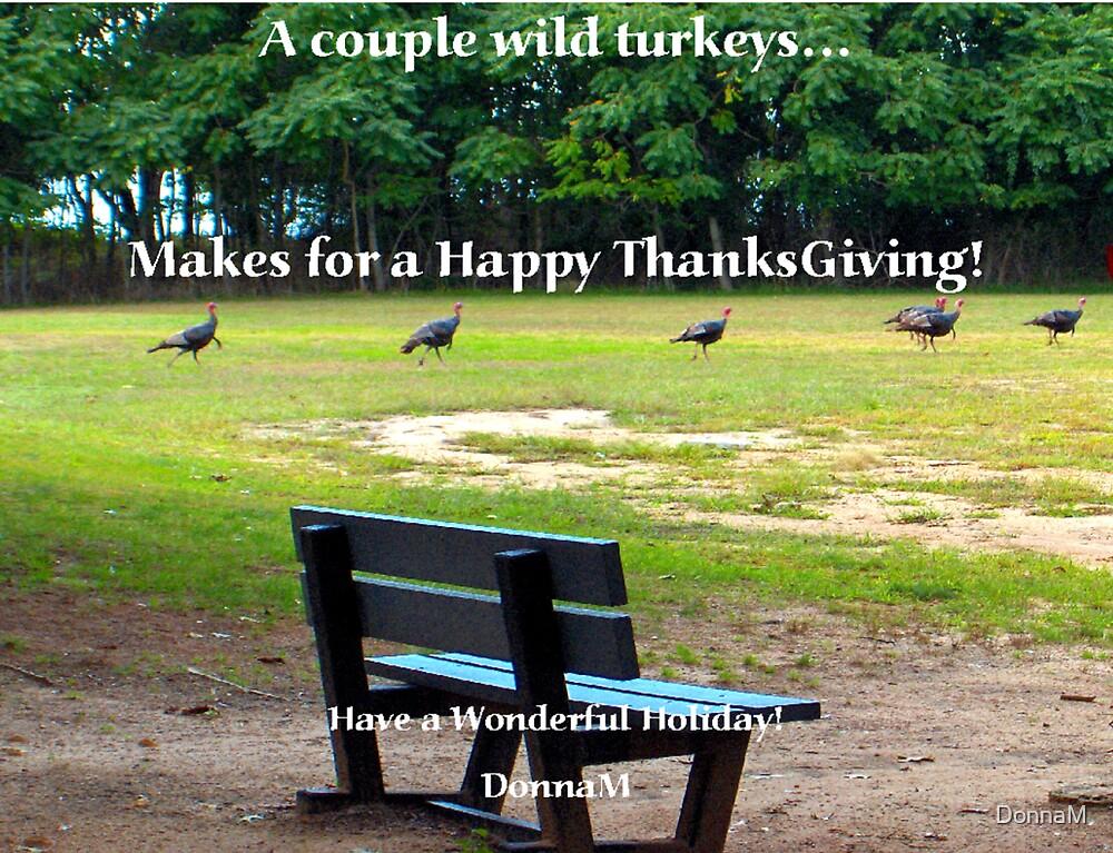 Wild Turkey by DonnaM