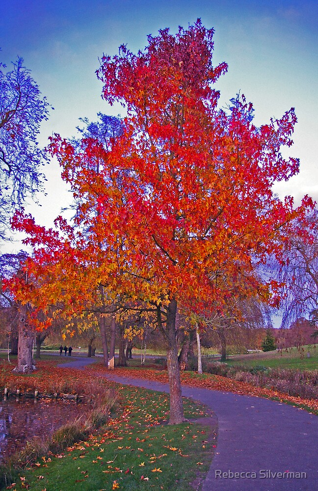 Colours of Autumn by Rebecca Silverman