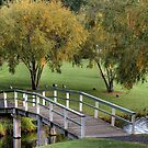 Bridge in the Park by GailD