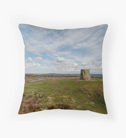 Danby Beacon 3 Throw Pillow