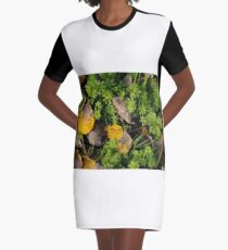 Poplar leaves on the Snayle Graphic T-Shirt Dress