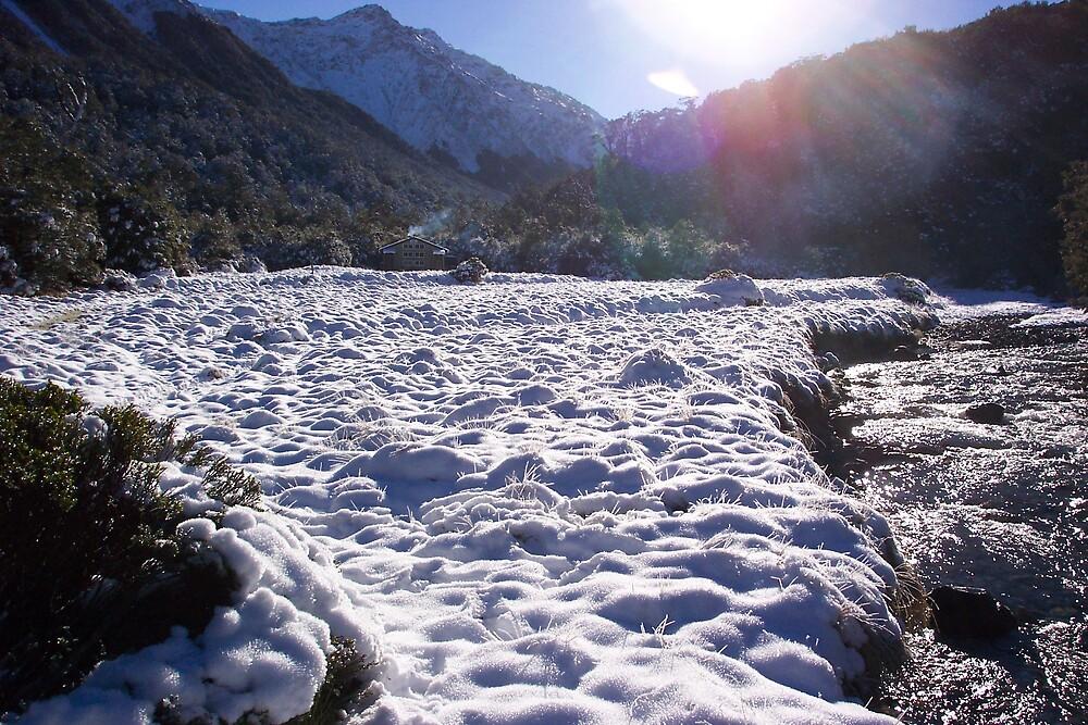 Winter sun by kiwistoofer