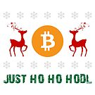 Just hodl by bsilvia