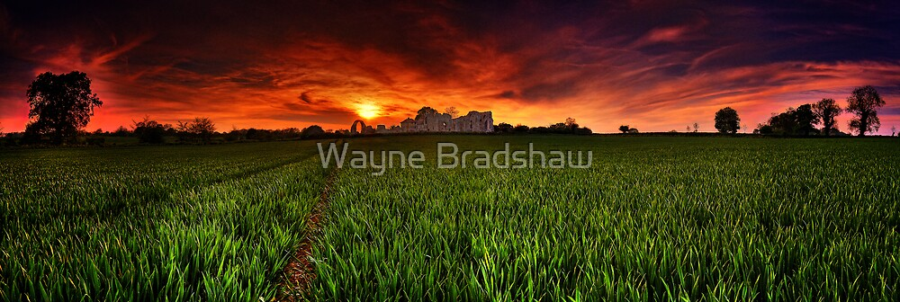 Leiston Abbey Panoramas. by Wayne Bradshaw