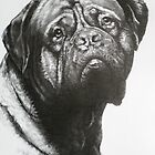 Dogue de Bordeaux by BarbBarcikKeith
