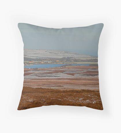 Scaling Dam Resevoir Throw Pillow