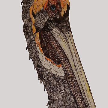 Sketchy pelican  by dingle22