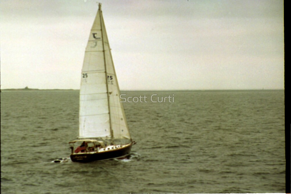 Sailing the Narr Bay by Scott Curti