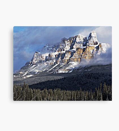 The Castle Revealed Canvas Print