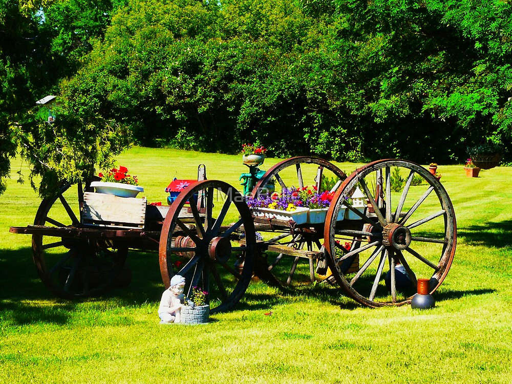 My Sis' Yard..Old Wagon by MaeBelle