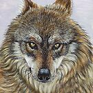Mexican Gray Wolf by artbyakiko