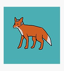 Fox McCloud Photographic Print