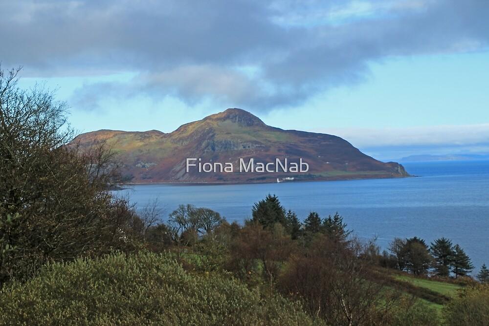 Holy Isle view by Fiona MacNab