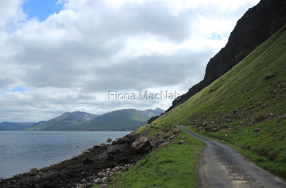 Island road by Fiona MacNab