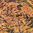 fall vortex by bruno benedetti