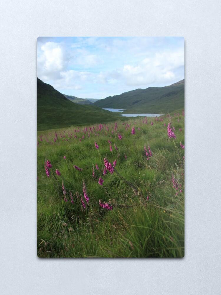 Alternate view of Field of foxgloves II Metal Print
