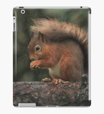 Squirrel shelter iPad Case/Skin
