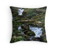 Mountain Creek Throw Pillow