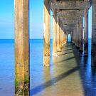 Brighton Jetty in the morning by Elana Bailey