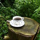 a nice cup of coffee in the bush by annet goetheer