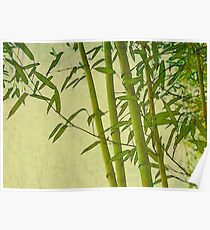 Zen bamboo abstract pattern with retro grunge feel Poster