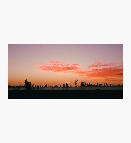 Florida Wilderness Sunrise Photographic Print
