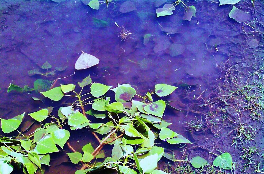 In Deep by monica98