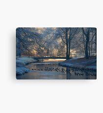 A little bridge in hoarfrost wonderland Canvas Print