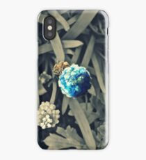 Bees: Earths Pollinators  iPhone Case/Skin