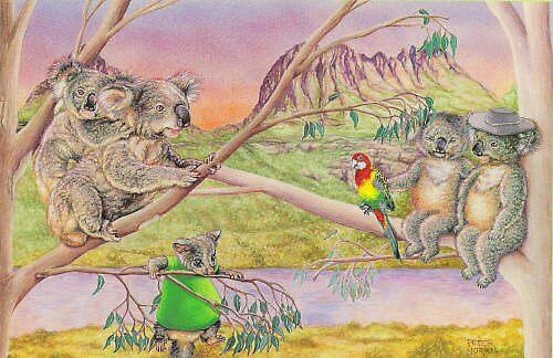 Parrots and Koalas by Pete Morris