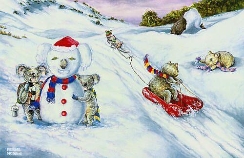 Snow by Pete Morris