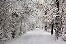 Winter Walk in  Fairytale by AnnieSnel