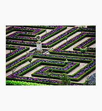 Formal Garden - Chateau Villandry, Loire Valley 2 Photographic Print