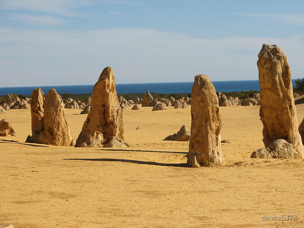The Pinnacles by denise6372