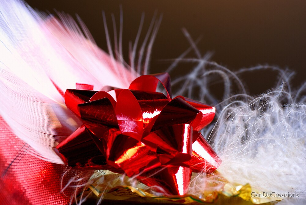 Holidays / christmas greeting card by CanDuCreations