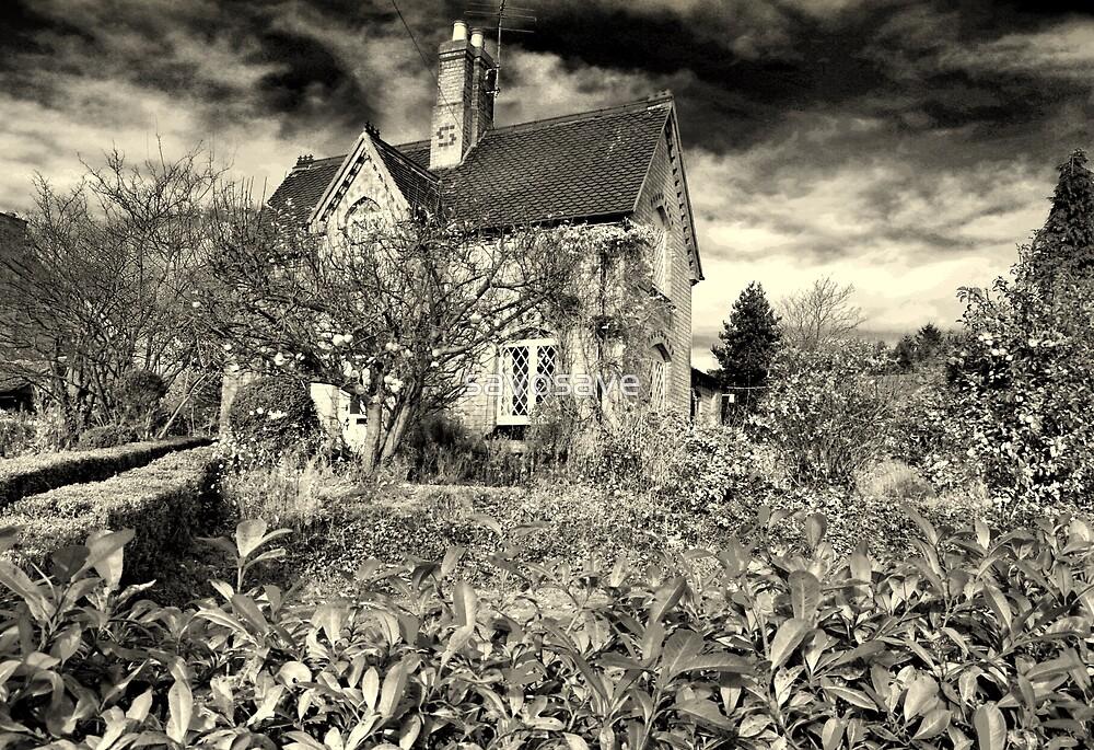 winter cottage  by savosave