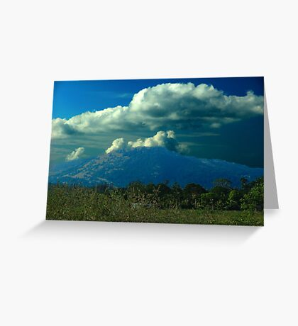Sudden Summer Rain Greeting Card