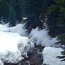 Winter Stream by Dennis Stewart