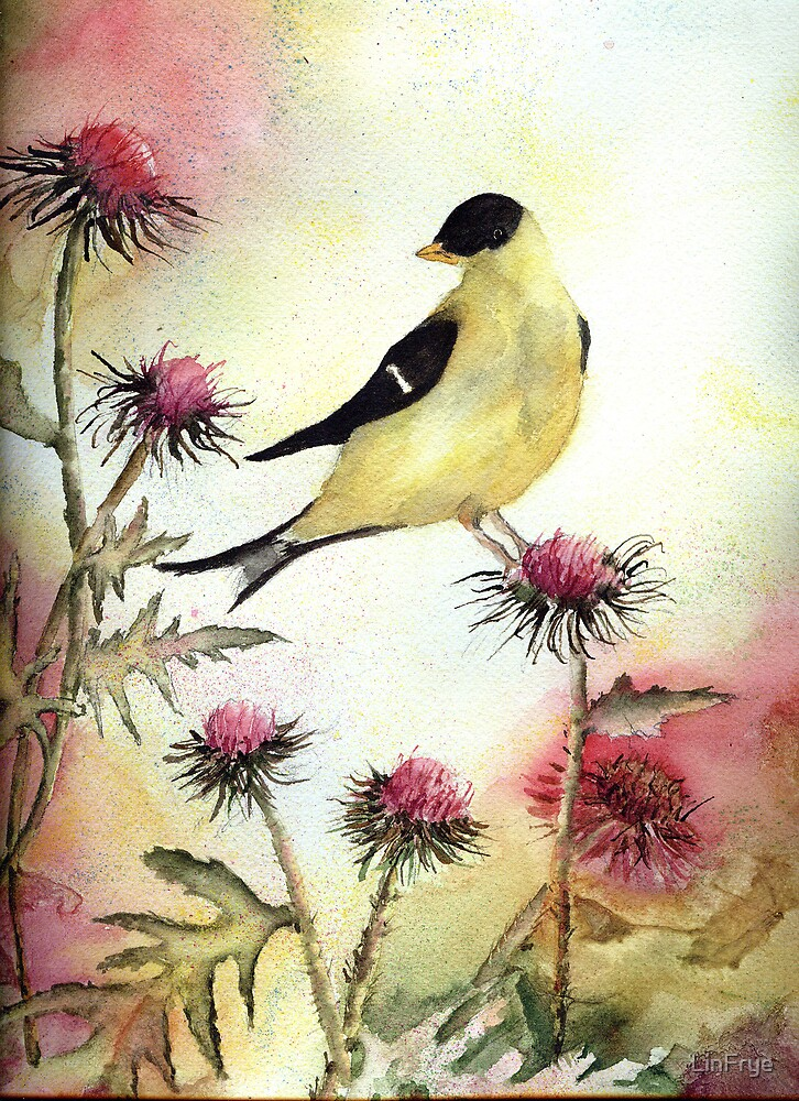 Goldfinch and Thistle by LinFrye