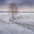 Lonely tree in the snow by Nicole W.