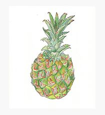 Tropical Queen Pineapple Fruit Photographic Print