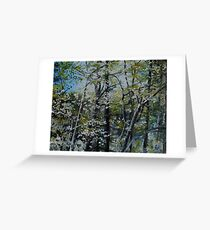 Dogwood spring at the lake Greeting Card
