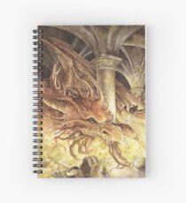Bilbo and Smaug the Dragon Spiral Notebook