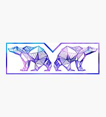 Polar Bear Geometric Aesthetic design Photographic Print