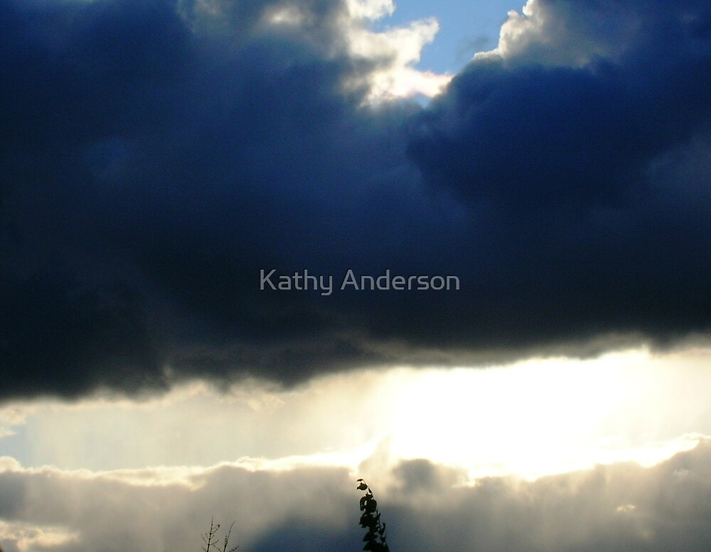 Winter Sol by Kathy Anderson