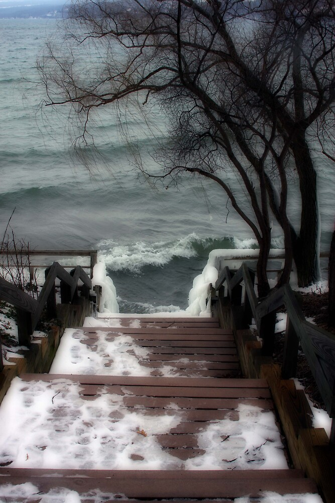 Wintery steps by oneline