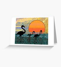 Flamingos in the Morning Greeting Card