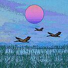 Pelicans in the Morning by Deborah Dillehay